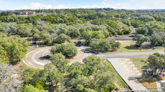 113 Sabella, Spring Branch, TX 78070 (MLS #1435261) :: Tom White Group