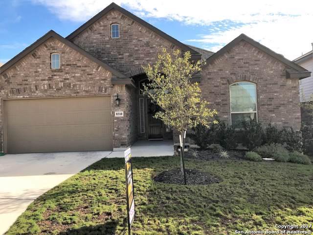8310 Hydrangea Path, San Antonio, TX 78015 (#1435538) :: The Perry Henderson Group at Berkshire Hathaway Texas Realty