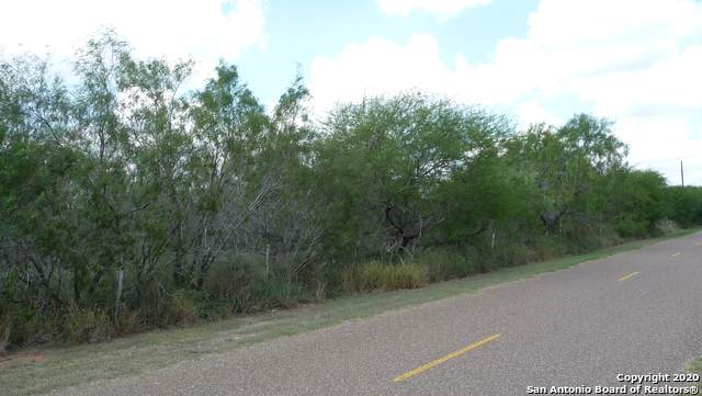 TBD Shelly Lori Rd, Edinburg, TX 78541 (MLS #1435546) :: Alexis Weigand Real Estate Group