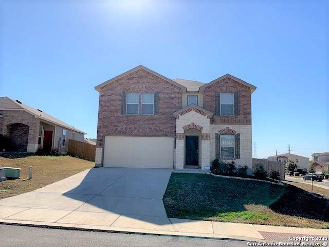 11338 Pink Star, San Antonio, TX 78245 (MLS #1435590) :: The Losoya Group