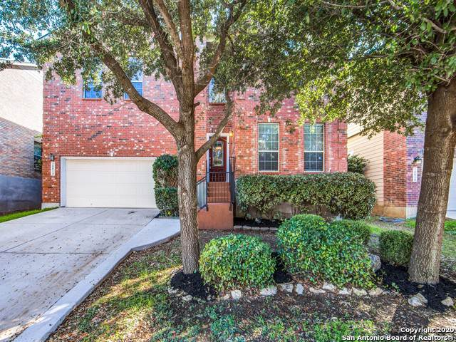 10814 Bramante Ln, Helotes, TX 78023 (MLS #1435649) :: EXP Realty