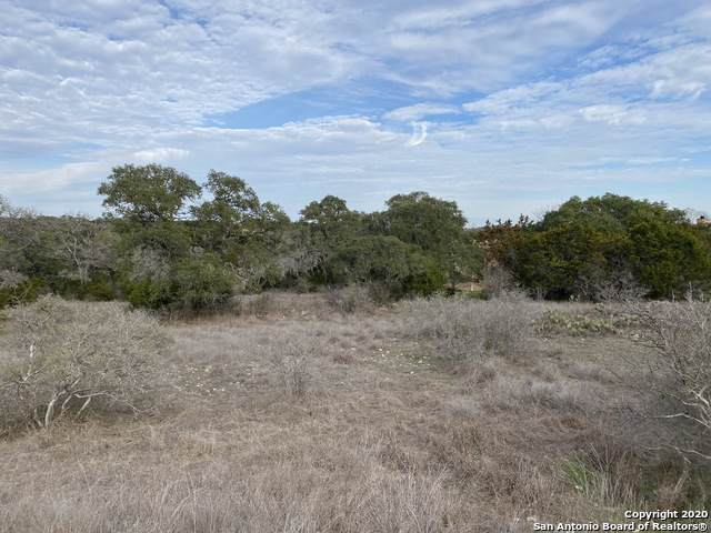 LOT 870 Mystic Parkway, Spring Branch, TX 78070 (MLS #1435653) :: Neal & Neal Team