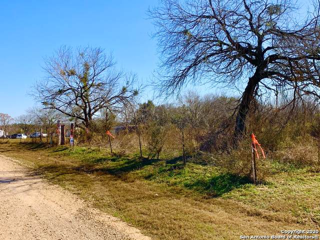 150 Countryview Dr, Pleasanton, TX 78064 (MLS #1435686) :: BHGRE HomeCity