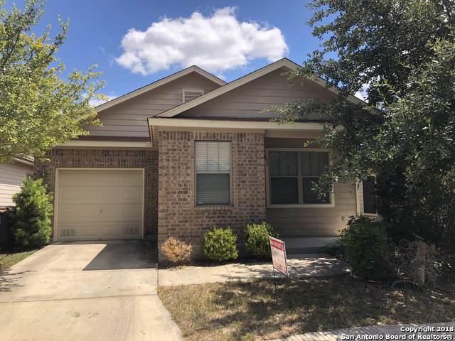 8530 Pecan Cross, San Antonio, TX 78240 (MLS #1435725) :: The Losoya Group