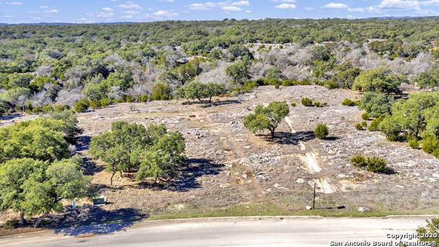 420 Havasu Pt, Spring Branch, TX 78070 (MLS #1435792) :: Williams Realty & Ranches, LLC