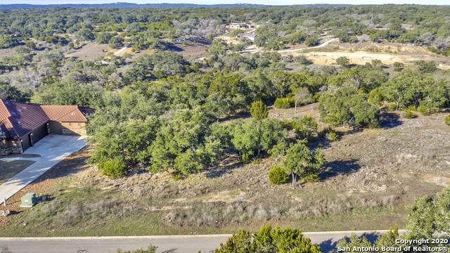 484 Havasu Pt, Spring Branch, TX 78070 (MLS #1435795) :: Williams Realty & Ranches, LLC