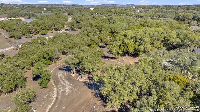 302 Havasu Pt, Spring Branch, TX 78070 (MLS #1435796) :: Alexis Weigand Real Estate Group