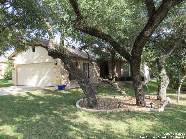 4722 Becker Vine, San Antonio, TX 78253 (MLS #1435860) :: The Mullen Group | RE/MAX Access