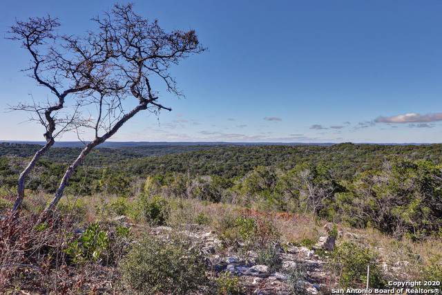 LOT 23 Pr 2775, Mico, TX 78056 (MLS #1435912) :: Alexis Weigand Real Estate Group