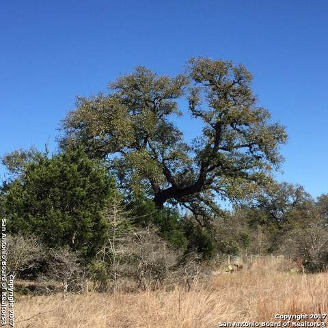 VO LOT 2078 Tbd, New Braunfels, TX 78132 (#1436081) :: The Perry Henderson Group at Berkshire Hathaway Texas Realty