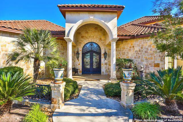 209 Park Ridge, Boerne, TX 78006 (MLS #1436360) :: The Mullen Group | RE/MAX Access