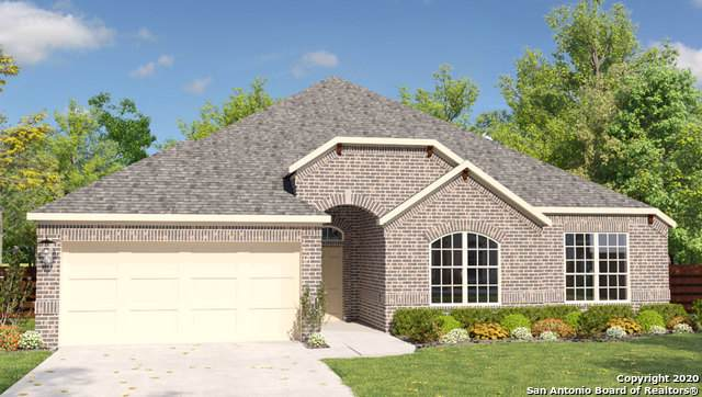 2544 Angelrodt, New Braunfels, TX 78132 (MLS #1436555) :: Neal & Neal Team