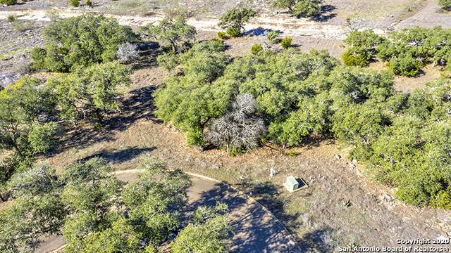 306 Havasu Pt, Spring Branch, TX 78070 (MLS #1436565) :: Williams Realty & Ranches, LLC