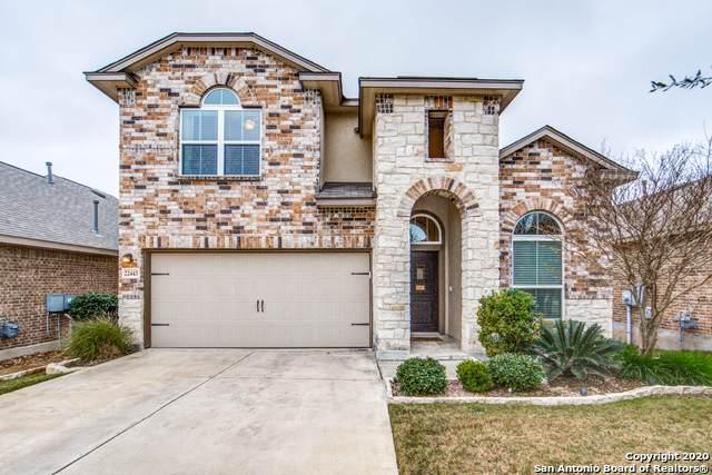 22443 Akin Fawn, San Antonio, TX 78261 (MLS #1436794) :: Reyes Signature Properties