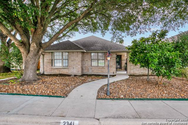 2341 Essex Grace, New Braunfels, TX 78130 (MLS #1437277) :: Exquisite Properties, LLC
