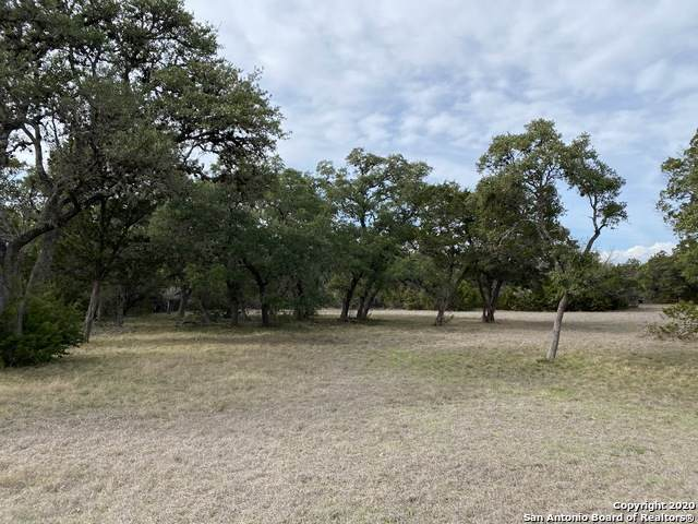 2471 George Pass, Canyon Lake, TX 78133 (MLS #1437404) :: BHGRE HomeCity