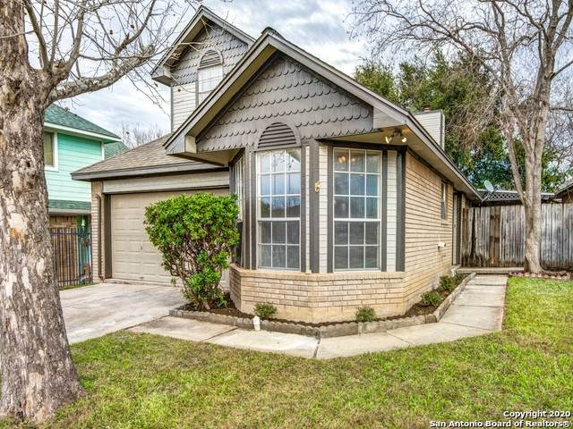 3846 Candlecrown Ct, San Antonio, TX 78244 (MLS #1437417) :: Alexis Weigand Real Estate Group