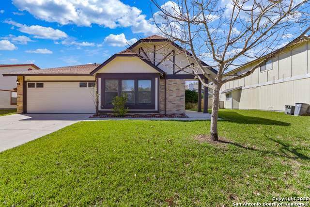 7031 Elk Trail, San Antonio, TX 78244 (MLS #1437800) :: Alexis Weigand Real Estate Group
