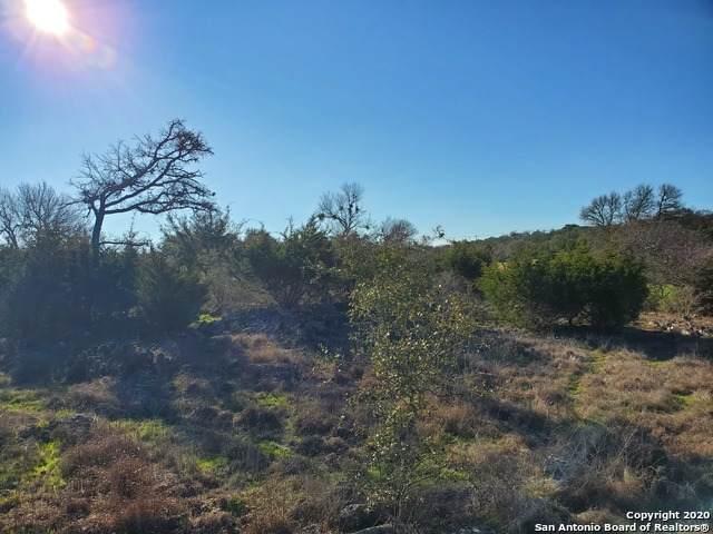 125 W Alex Jordan, Blanco, TX 78606 (MLS #1437859) :: The Glover Homes & Land Group