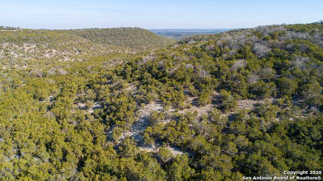 LOT 37 Antelope Cove, Blanco, TX 78606 (MLS #1437871) :: The Glover Homes & Land Group