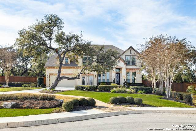 28603 Tristant Rdg, San Antonio, TX 78260 (MLS #1437886) :: Alexis Weigand Real Estate Group