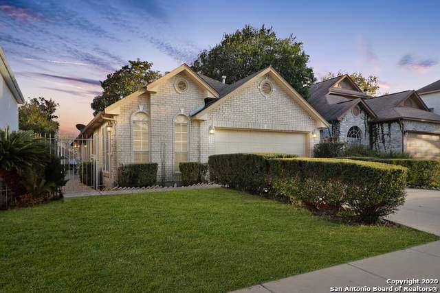 5838 Spring Crossing, San Antonio, TX 78247 (MLS #1437940) :: EXP Realty