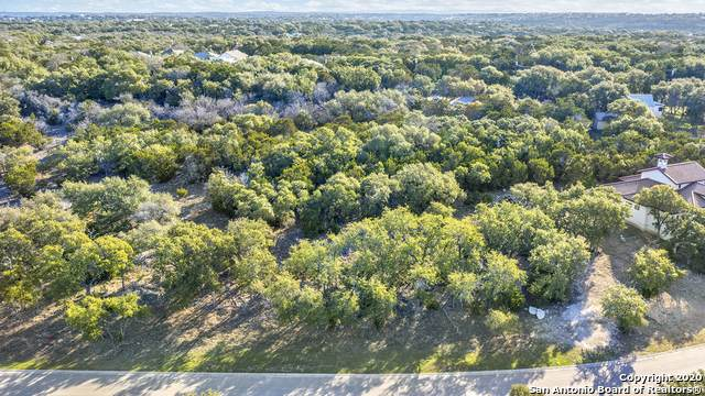 463 Havasu Pt, Spring Branch, TX 78070 (MLS #1438016) :: Santos and Sandberg