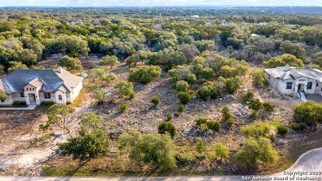 447 Havasu Pt, Spring Branch, TX 78070 (MLS #1438018) :: Santos and Sandberg