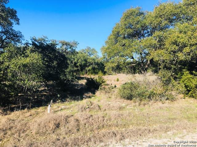 ROCKIN J RANCH Rockin J Ranch, Blk 4, Lot 1395, Acres .25, Blanco, TX 78606 (MLS #1438031) :: The Glover Homes & Land Group