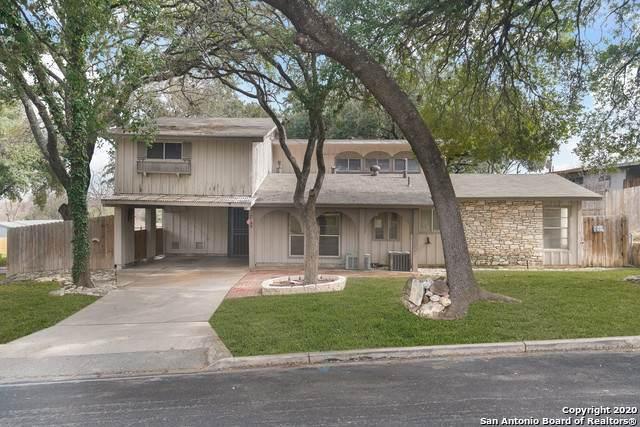 3219 Greenacres Dr, San Antonio, TX 78230 (MLS #1438288) :: Reyes Signature Properties