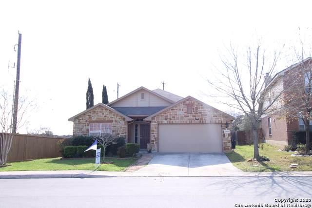 25603 Spirea, San Antonio, TX 78261 (MLS #1438366) :: Alexis Weigand Real Estate Group