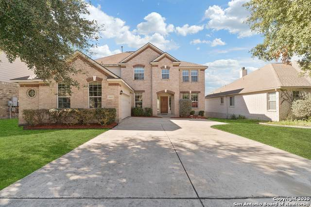 25023 Catalan Clf, San Antonio, TX 78261 (MLS #1438579) :: Reyes Signature Properties