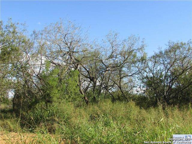 4045 Jakes Colony Rd, Seguin, TX 78155 (MLS #1438643) :: Alexis Weigand Real Estate Group