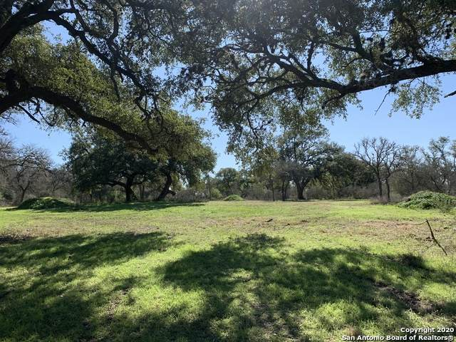 0 TBD Timmermann Rd, Seguin, TX 78155 (MLS #1438669) :: BHGRE HomeCity