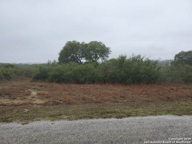 103 Ira Long, Blanco, TX 78606 (MLS #1438725) :: The Glover Homes & Land Group