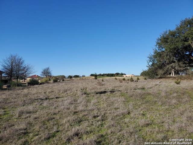114 Bryan Marsh, Blanco, TX 78606 (MLS #1438746) :: The Glover Homes & Land Group