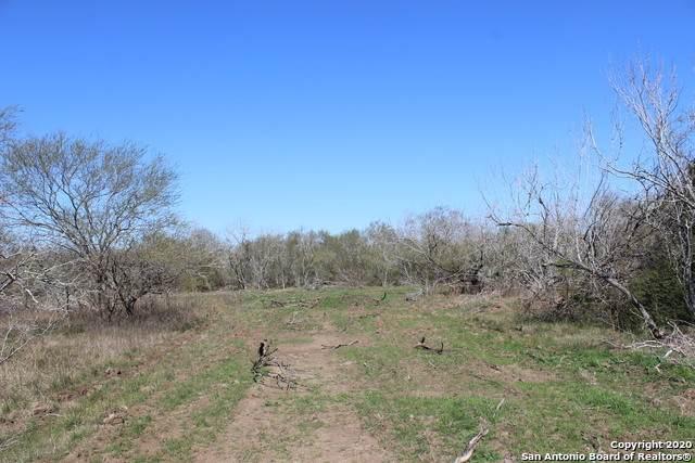 600 County Road 483, Nixon, TX 78140 (MLS #1438901) :: Carolina Garcia Real Estate Group