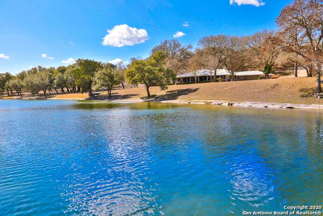 16098 S State Highway 16, Fredericksburg, TX 78624 (MLS #1439136) :: Tom White Group