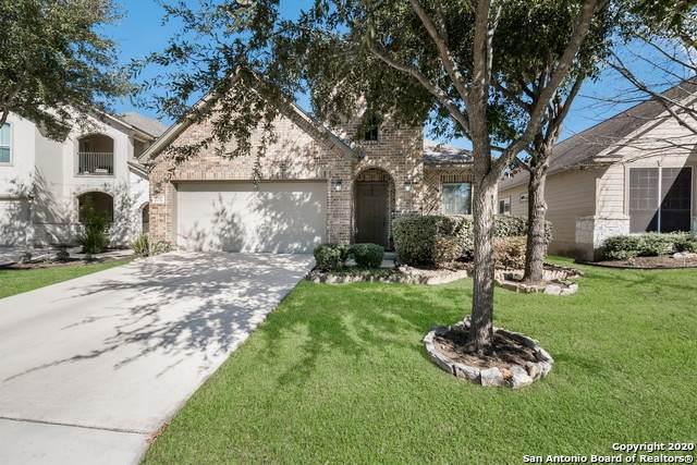 21730 Thunder Basin, San Antonio, TX 78261 (MLS #1439350) :: BHGRE HomeCity