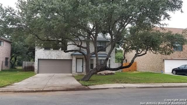 2312 Newoak Park, San Antonio, TX 78230 (MLS #1439423) :: ForSaleSanAntonioHomes.com