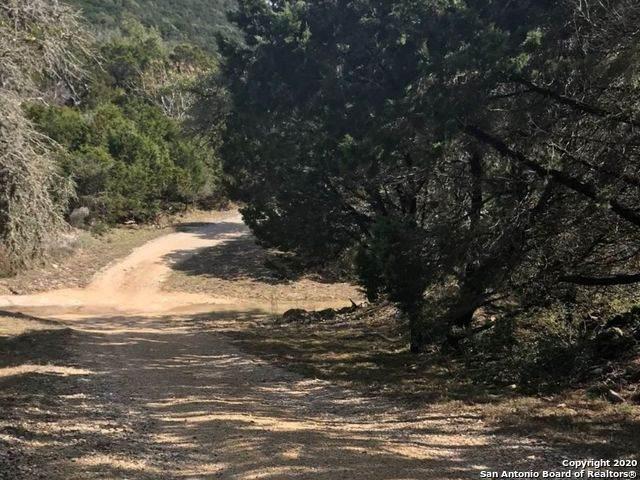340 Ta Shunka Trail, Pipe Creek, TX 78063 (MLS #1439463) :: The Mullen Group | RE/MAX Access