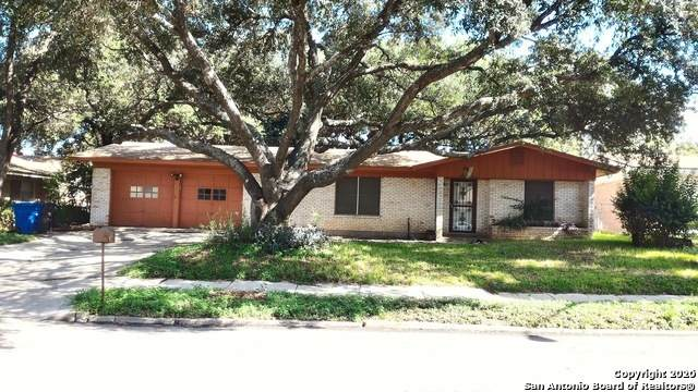 4235 Chestnuthill Drive, San Antonio, TX 78218 (MLS #1439647) :: Alexis Weigand Real Estate Group