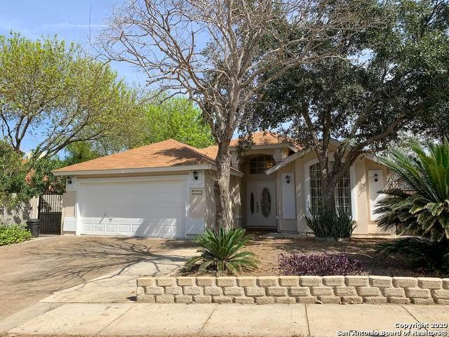 8731 Aida Ct, Laredo, TX 78045 (MLS #1439901) :: Reyes Signature Properties