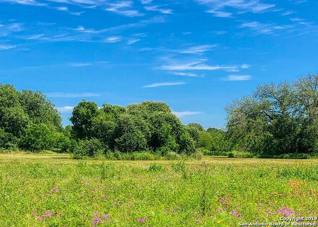 157 N 1st St, Floresville, TX 78114 (MLS #1439937) :: Williams Realty & Ranches, LLC
