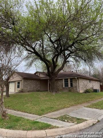 8131 Forest Dawn, Live Oak, TX 78233 (MLS #1440080) :: The Mullen Group | RE/MAX Access