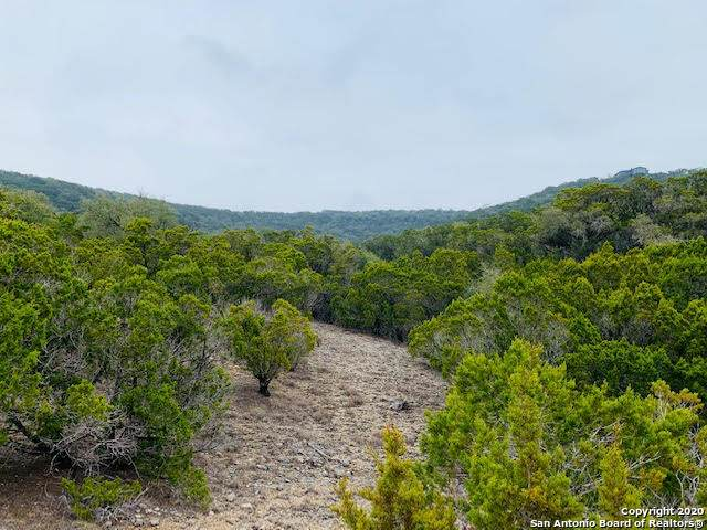LOT 143 Pr 1735, Mico, TX 78056 (MLS #1440273) :: Reyes Signature Properties