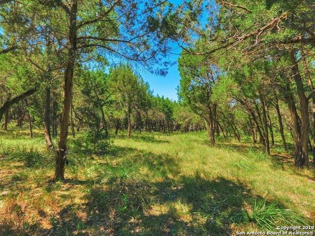 24907 Miranda Ridge, Boerne, TX 78006 (MLS #1440285) :: Exquisite Properties, LLC