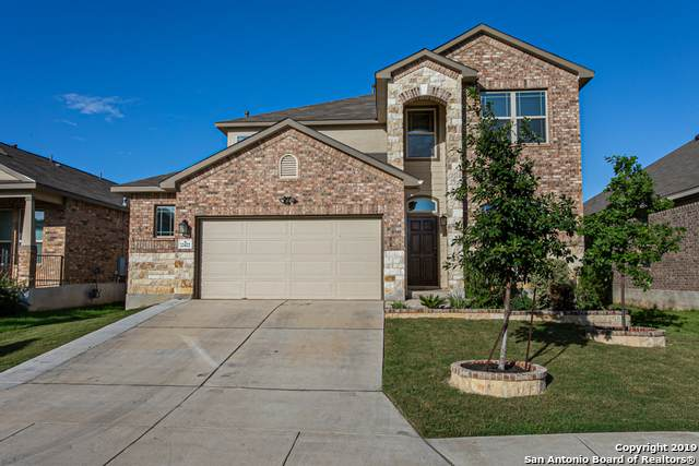 22422 Carriage Bush, San Antonio, TX 78261 (MLS #1440400) :: The Glover Homes & Land Group