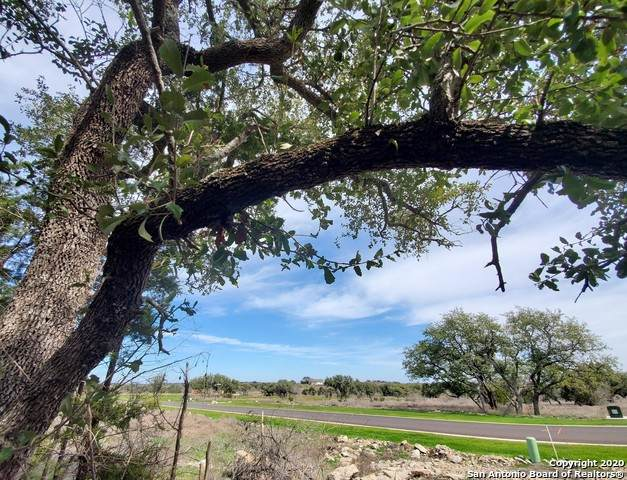 LOT 21 Oak Park Drive, Spicewood, TX 78669 (MLS #1440412) :: The Glover Homes & Land Group