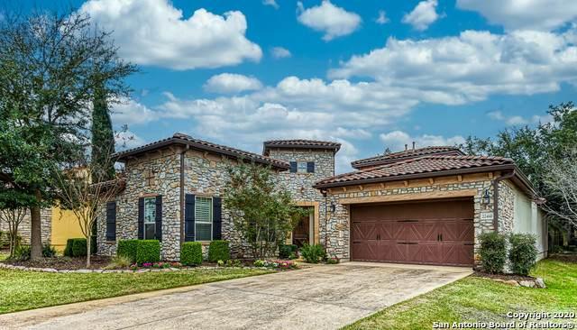 22460 Viajes, San Antonio, TX 78261 (MLS #1440443) :: The Rise Property Group